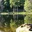 Arbersee Beierse woud Duitsland.