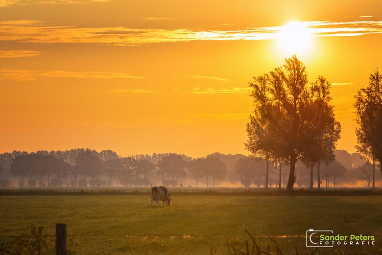 Zonsopkomst Rhenen - Aan de zonsopkomst in Rhenen te zien lijkt het weer een fantastische dag te gaan worden.