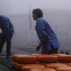 Kaasmarkt Alkmaar - Kaaszetters