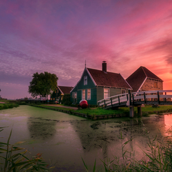 Zaanse beauty