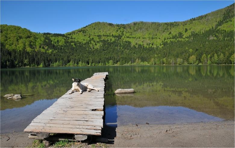 Nog niet ontdekt - En gelukkig maar.<br /> <br /> Een van de vele mooie meren in Transsylvanië, Roemenië vaak omgeven door prachtige diep groene, no