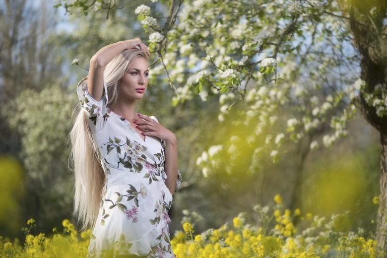 Springtime - Lenteportret in een oude boomgaard. Na jaren eindelijk om een portret te schieten op het moment dat bloesem en koolzaad tegelijk in bloei