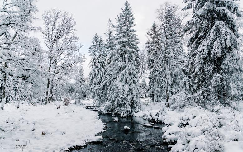 Winter wonderland - Sfeervol sneeuwlandschap in de Ardennen.<br /> <br /> Voor meer, neem gerust een kijkje op:<br /> https://www.facebook.com/Shot