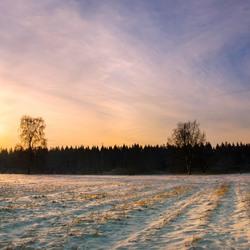 Westerbork in winter