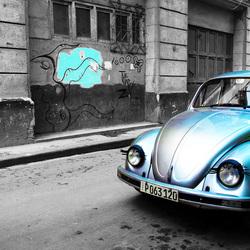 Beetle in Cuba