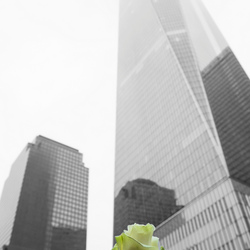 Freedom Tower New York