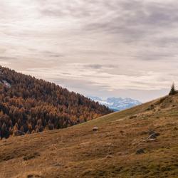 Herfst Italie