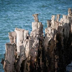 Een front tegen de zee
