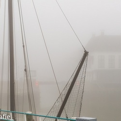 Harlinger haven in mist gehuld