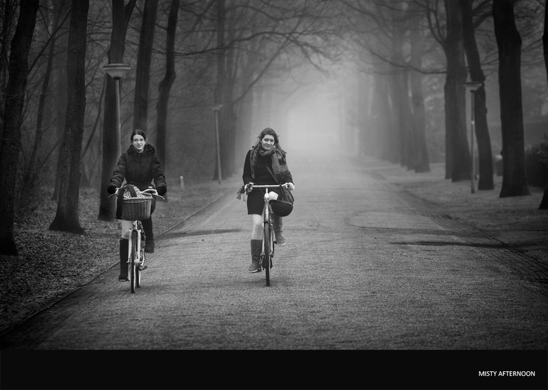 Misty afternoon -