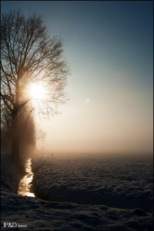 Winterwonderland - Tijdens een mistige, besneeuwde, toch zonnige ochtend ben ik in mijn autootje de landerijen ingereden op zoek naar mooie winterse p