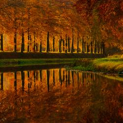 Splendid Autumn