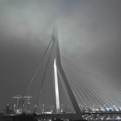 Fog Rotterdam