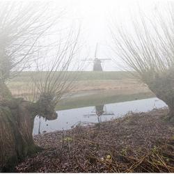 Hollandse mist