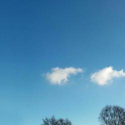 Wolken en boomtoppen, symmetrie