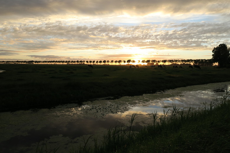 Puur Hollands Avondje - Onbewerkte foto, pure schoonheid!