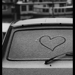 Warm hart