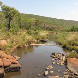Afrikaans landschap...