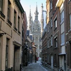 Leuven in de winter