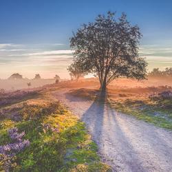 Prachtige morgen op de Renderklippen