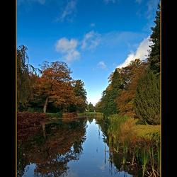 Herfst in Oranjewoud