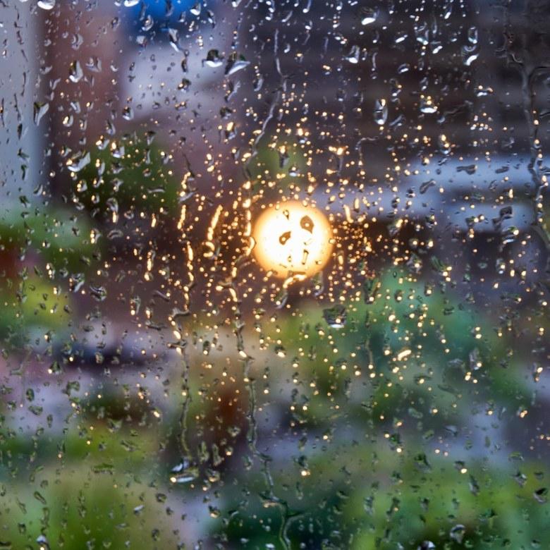 Op een regenachtige avond ... - ruim een week geleden.
