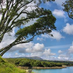 Landschap Dunboy Ierland (vergezicht)