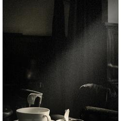 tea noir . . .