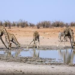 Namibië 104