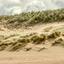 Hoge duinen