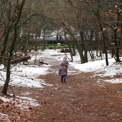 Winter wandeling met de kids