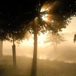 herfst morgen