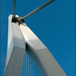 Rotterdam-66