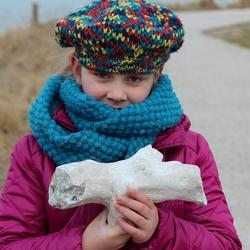 Stenen fossiel