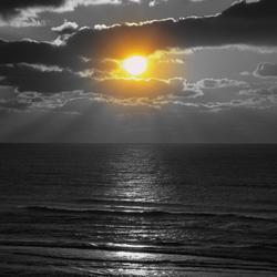 sun black and white