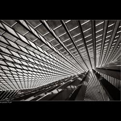 Lines of Calatrava [1]