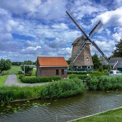 Hollands pride