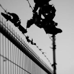 Border of black&white