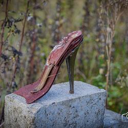Gevonden schoen