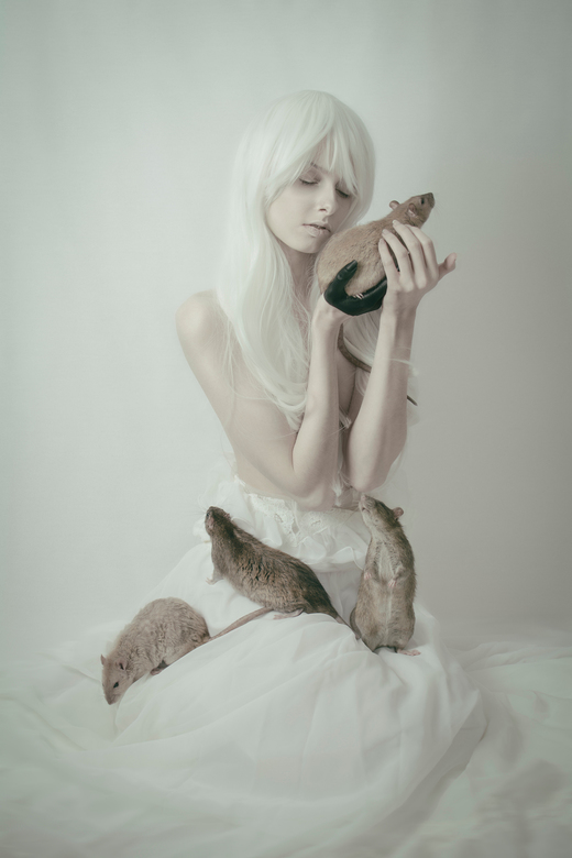 Among - Cruelty-Free series<br /> <br /> © Loes Gorseling Photography<br /> Model: Fox &amp; Lionheart<br /> Makeup &amp; Hair: Latisha Soebhag