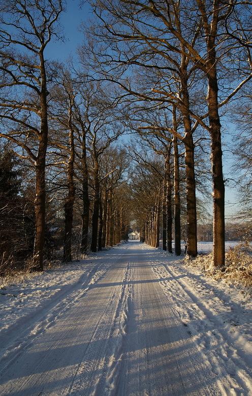 Winterpracht - Dit is de laatste foto die ik plaats van onze laatste wandeling in de omgeving van Bilthoven.