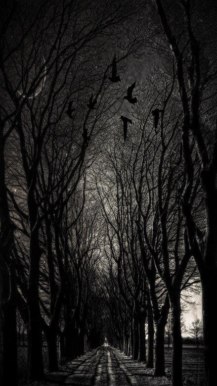 Dark in the darkside of the moon - Beleef je eigen beleving<br /> Maak je eigen beleving<br /> Leef je eigen beleving<br /> Deel je eigen beleving