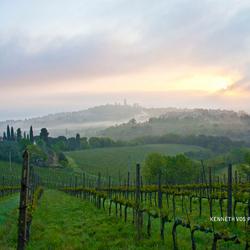 Ochtendgloren nabij Santa Gimignano