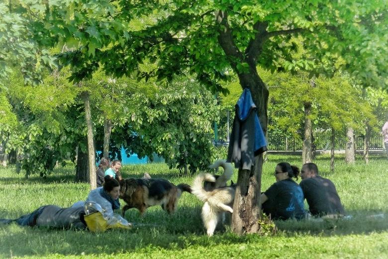 Familie in het park - Boekarest