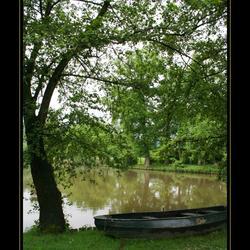 Bootje aan de waterkant