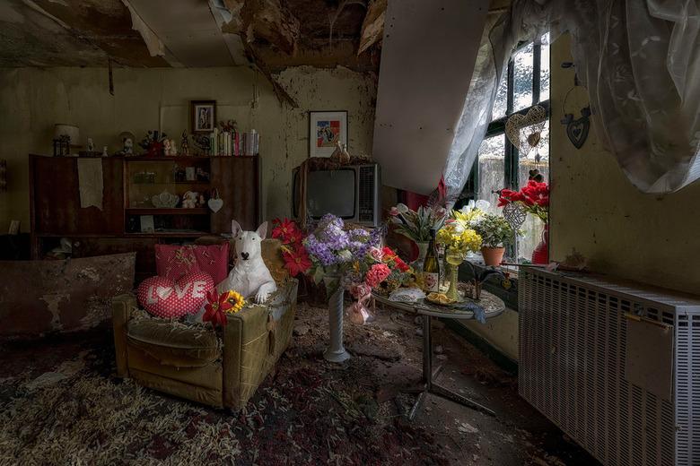 Love is All you Need - Verlaten boerderij waarvan alleen deze kamer nog volledig intact is.