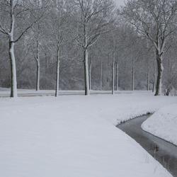 Winterse omstandigheden; wel sneeuw maar nog geen ijs