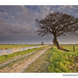 Staphorster landschap (1)
