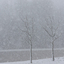 It is winter in Holland
