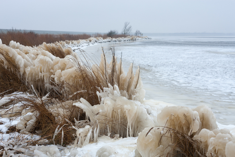 Winter in Lauwersmeer - 15 februari 2021.<br /> In het noorden van Friesland was door de storm het water en de vorst, het riet veranderd in ijssculpt